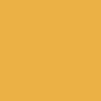 ќранжевый