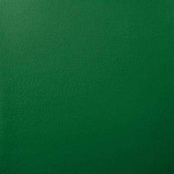 Кож/зам, зеленый, 36-001