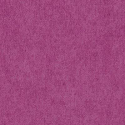 Фиолетовый микровельвет
