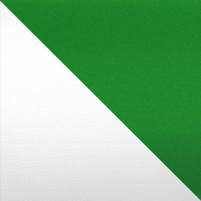 Бело-зеленый
